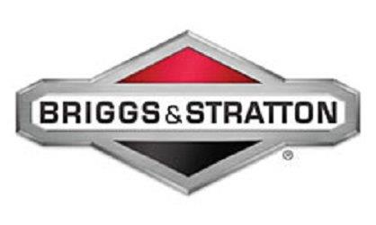 Briggs and Stratton Aurora Naperville Illinois